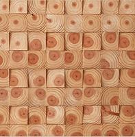 松木年轮木  背景板
