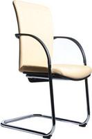 弓型架定型海绵会客椅 5273B2