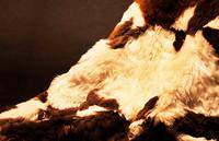 INJOI羊驼床毯