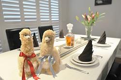 INJOI澳大利亚羊驼玩偶摆件