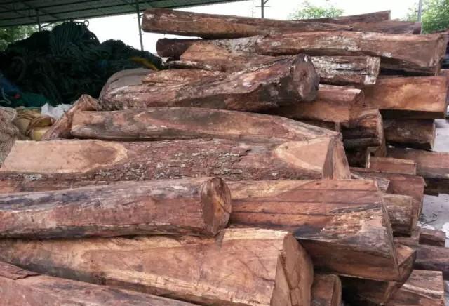 """红木原料半年暴涨5成    """"价格倒挂""""木材比家具还贵"""