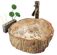 木化石台上盆