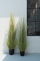 仿真秋色狗尾巴草植物盆栽