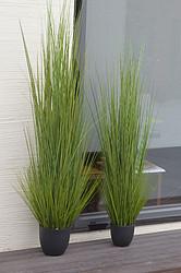 仿真春色洋葱草植物盆栽