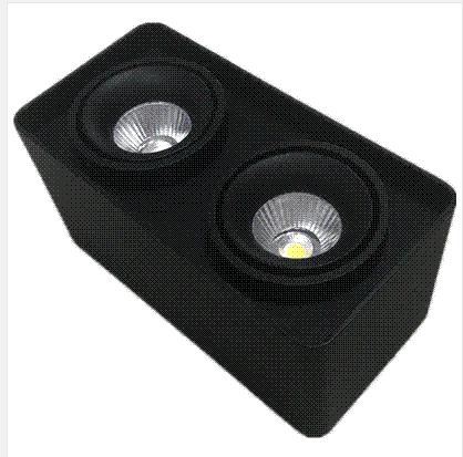雷尼司现代LED白色黑色SLC78005/2*10W筒灯射灯