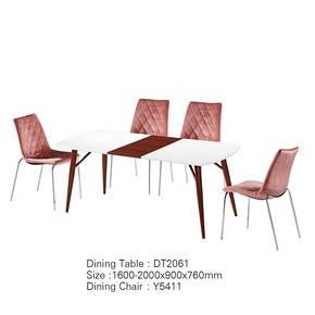 餐桌椅 DT2061 Dining table